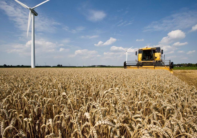 Tarwe-oogst-Combine-korenveld-Windmolen